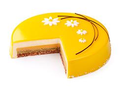 Торт Апельсин-абрикос 1 кг